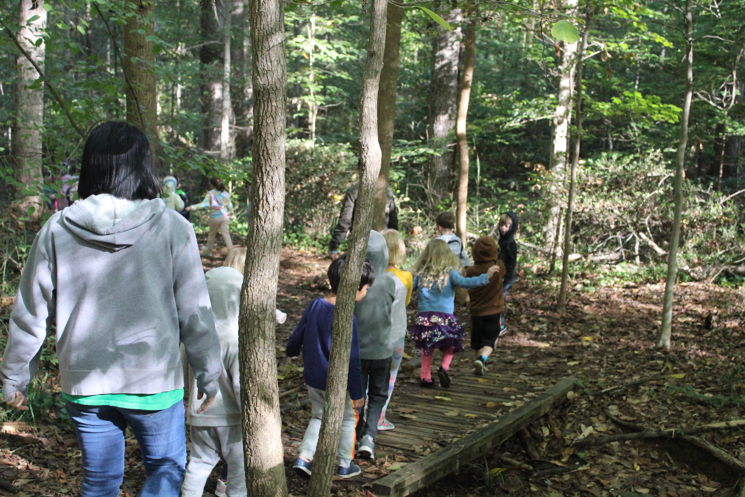 Frazer Forest Outdoor Classroom